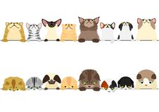 Cute cats looking up and down border set. Multi colored vector illustration
