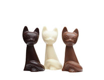 Cute cats made from different kinds of chocolate. Little cats made from different kinds of chocolate, close-up stock photo