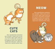 Cute cats that say meow promotional vertical posters. Friendly pets that need home commercial with sample text. Playful and funny cats and kittens cartoon flat Stock Image