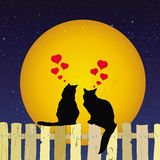 Cute cats sharing love on a fence. This image represents two cute cats sharing love in the night on a fence with full moon vector illustration