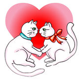 Cute cats valentine s day Stock Photography