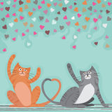 Cute Cats for Valentine`s Day celebration. Royalty Free Stock Photo