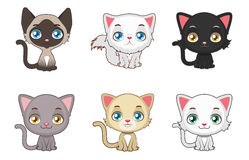 Cute cats variation. Six cats Stock Photo