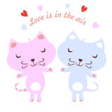 Cute Cats Royalty Free Stock Images