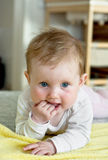 Cute caucasian baby with beautiful eyes lying on stomach Royalty Free Stock Photography