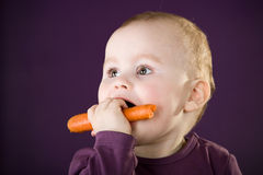 Cute caucasian baby boy. Portrait of a cute one year old caucasian baby boy eatting a carrot Royalty Free Stock Photo