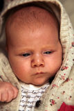 Cute Caucasian baby Stock Image