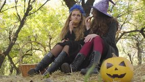 Cute caucasian girls in Halloween costumes eating cookies in the autumn forest and chatting. Yellow pumpkin and straw. Basket laying next to the friends stock video