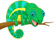 Cute chameleon cartoon Stock Photo