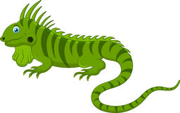 Cute chameleon cartoon Royalty Free Stock Photos