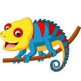 Cute Chameleon cartoon. Illustration of Cute Chameleon cartoon royalty free illustration