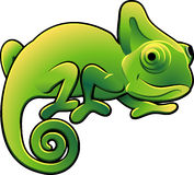 Cute Chameleon Vector Illustra. A vector illustration of a cute chameleon lizard Stock Photo