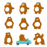 Cute character brown bear variety action pack  Stock Photo