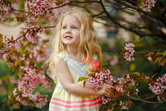 A cute charming blonde girl with lush hair smiling on a pink sakura spring background royalty free stock photography