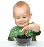 Cute cheerful little boy is eating blackberry Royalty Free Stock Images