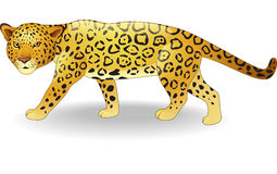 Cute cheetah cartoon royalty free illustration