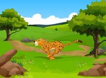 Cute cheetah cartoon running in the jungle Stock Image