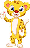 Cute cheetah cartoon. Cute cheetah with white background Stock Image