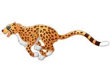 Cute cheetah running Stock Image
