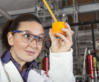 Cute chemist working in laboratory Royalty Free Stock Image