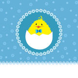 Cute chick - baby boy Royalty Free Stock Photos