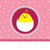 Cute chick - baby girl Royalty Free Stock Images