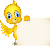 Cute chick cartoon with blank sign Stock Photos