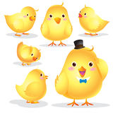 Cute Chick cartoon. Cute little yellow Easter chick isolated on white background Stock Photo