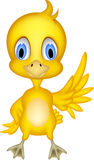 Cute chick cartoon Stock Photography