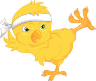 Cute chick cartoon Stock Photography