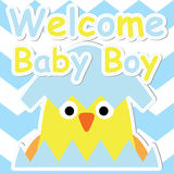 Cute chick in egg cartoon on blue chevron background, Baby shower postcard, greeting and invitation card Stock Photo