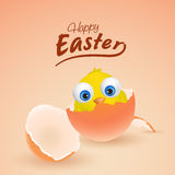 Cute chick for Happy Easter celebration. Happy Easter celebration with cute chick coming out from egg, can be used as greeting or invitation card design Stock Images