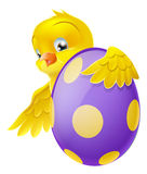 Cute chick and painted chocolate Easter egg. Cute Easter chick cartoon character holding onto and peeking round a painted chocolate Easter egg Stock Images
