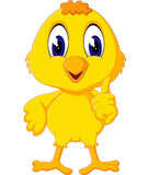 Cute chicken cartoon Stock Photo
