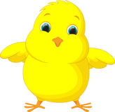 Cute chicken cartoon Royalty Free Stock Photography