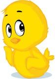 Cute chicken cartoon - vector illustration Stock Images