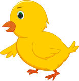Cute chicken cartoon Stock Image