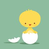 Cute chicken character. Illustration Royalty Free Stock Photography