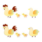 Cute chicken family. There is cute chicken family Royalty Free Stock Photo