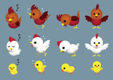 Cute Chicken Family Cartoon Character Poses Set 2 Royalty Free Stock Photos