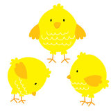 Cute chicken sets. With tree angle position Stock Photo