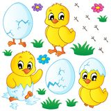 Cute chickens collection Royalty Free Stock Photo