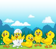 Cute chickens topic image 3. Eps10 vector illustration vector illustration