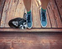 A cute chihuahua sitting next to his owner`s feet on an old wood royalty free stock photos