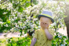 Cute child, baby boybaby laughs covering his face with his hand in blooming garden, springtime stock images