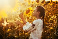 Cute child in a blossoming sunflower field Stock Images