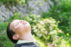 A cute child blowing a dandelion Royalty Free Stock Images