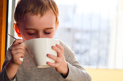 Cute child drinking tea Stock Photography