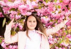 Cute child enjoy warm spring day. Aromatic blossom concept. Girl tourist posing near sakura. Tender bloom. Child on pink. Flowers of sakura tree background royalty free stock photo