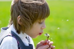 A cute child girl blowing a dandelion Stock Image
